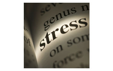 HSE Stress Management Workshop