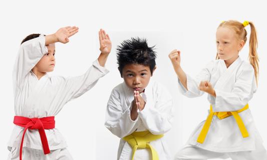 Cho's Taekwondo